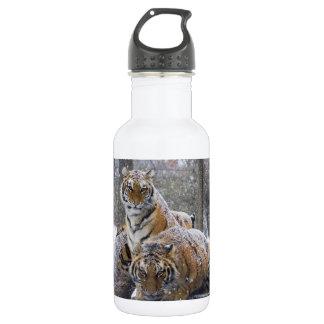 Winter Tigers 532 Ml Water Bottle