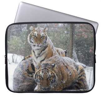 Winter Tigers Laptop Sleeve