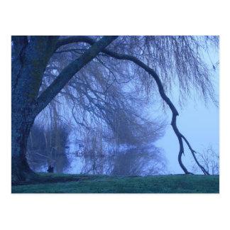Winter tree and lake postcard