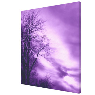Winter Tree and Sky in Purple Wrapped Canvas