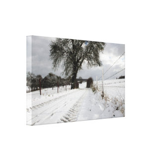 Winter Tree Country Road + Snow Gallery Wrapped Canvas