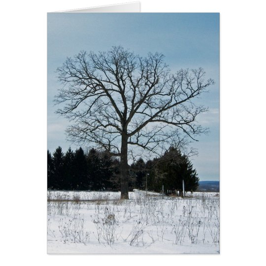 Winter Tree Joy Card