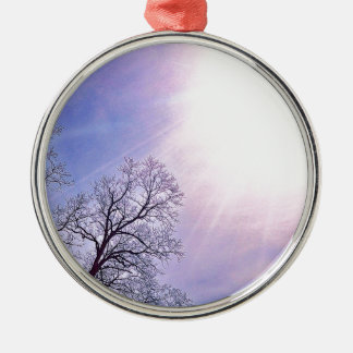 Winter Trees & A Cold Sun Seasonal Nature Art Silver-Colored Round Decoration