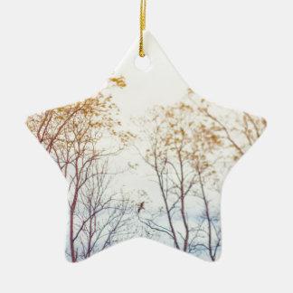 Winter Trees Ceramic Star Decoration