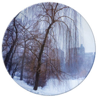Winter Trees In Central Park Plate