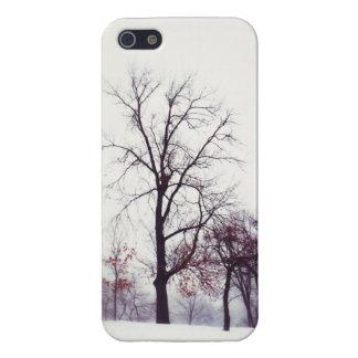 Winter Trees iPhone 5/5S Case