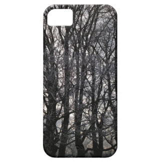 Winter Trees iPhone 5 Cases