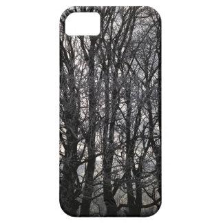 Winter Trees iPhone 5 Cases