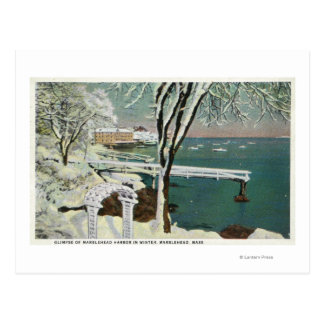 Winter View of the Marblehead Harbor Postcard