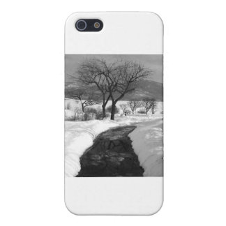 Winter Walkway Cover For iPhone 5