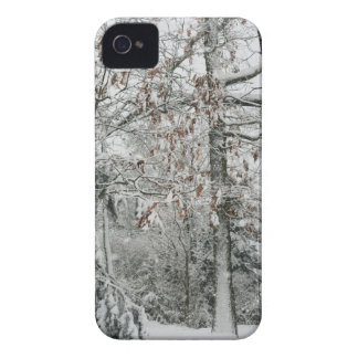 winter weather iPhone 4 Case-Mate case