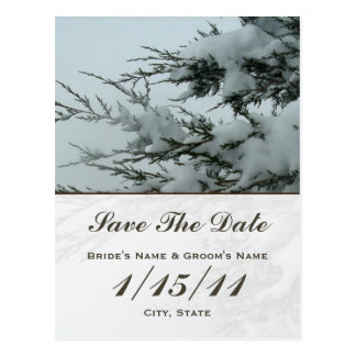 Winter Wedding Snow Save The Date Postcard
