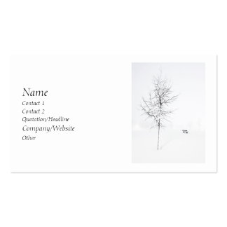 Winter White Pack Of Standard Business Cards