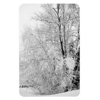 Winter Whites Magnet