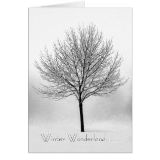 Winter Wonderland...... Greeting Card