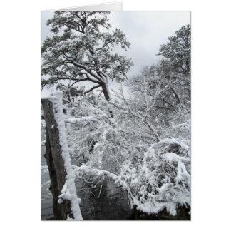 Winter Wonderland II Card
