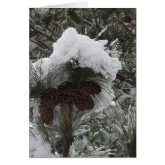 Winter Wonderland III Card