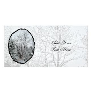 Winter Wonderland Photo Card