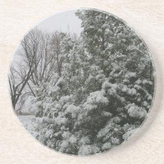 Winter Wonderland Pine Tree with Snow Fall Coasters