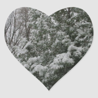 Winter Wonderland Pine Tree with Snow Fall Heart Sticker
