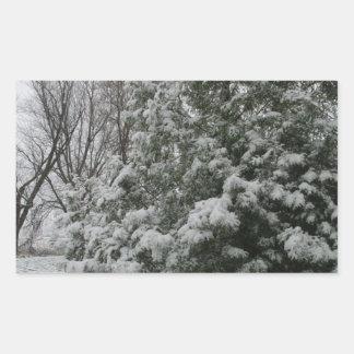 Winter Wonderland Pine Tree with Snow Fall Rectangular Sticker