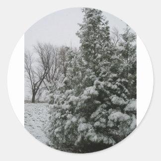 Winter Wonderland Pine Tree with Snow Fall Round Sticker