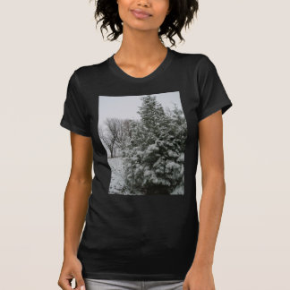 Winter Wonderland Pine Tree with Snow Fall Shirts