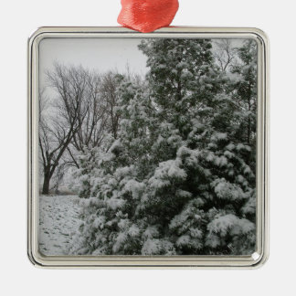 Winter Wonderland Pine Tree with Snow Fall Silver-Colored Square Decoration