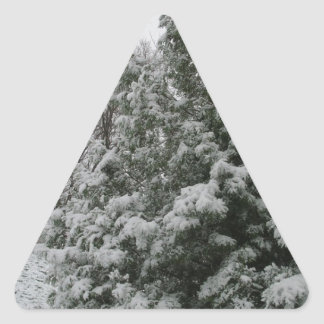 Winter Wonderland Pine Tree with Snow Fall Triangle Sticker