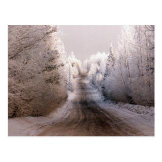 Winter Wonderland - Postcard