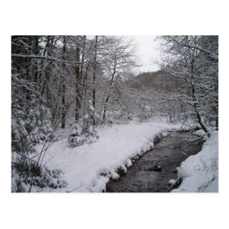 Winter wonderland postcard