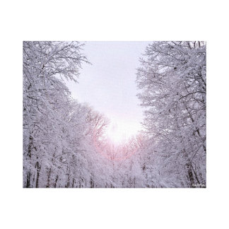 Winter wonderland snow covered landscape canvas print