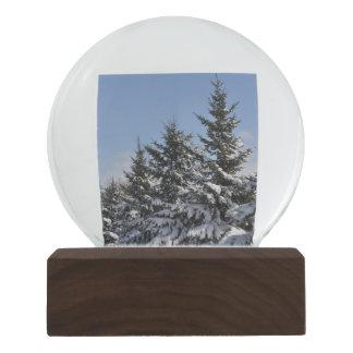 Winter Wonderland Walnut Snow Globe by Janz Snow Globes