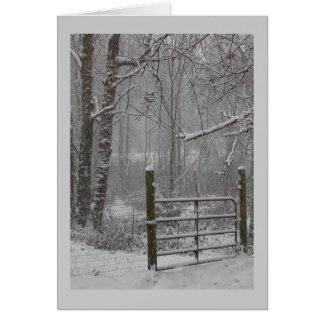 Winter woods snow scene greeting cards