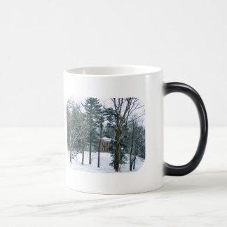 Winter's Day At Butler Mansion Winter Morphing Mug