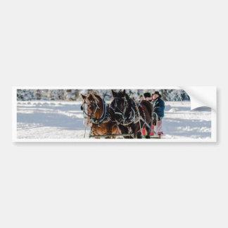 Winter's Wonderland Bumper Sticker