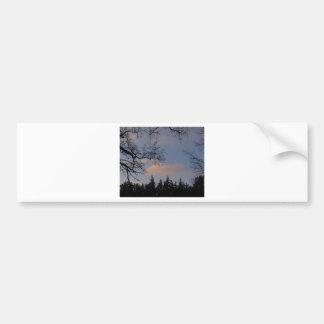 WinterSky Bumper Sticker