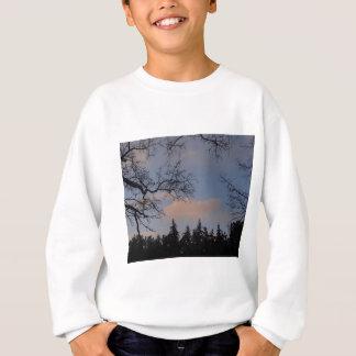 WinterSky Sweatshirt