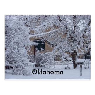 Winterstorm 2010(Oklahoma) Postcard
