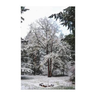 Wintery Snow covered oak tree Canvas Print