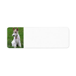 wire fox terrier sitting.png return address label