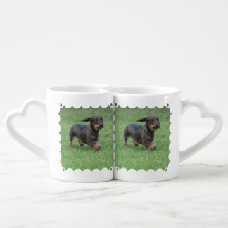 Wire Haired Dachshund Coffee Mug Set