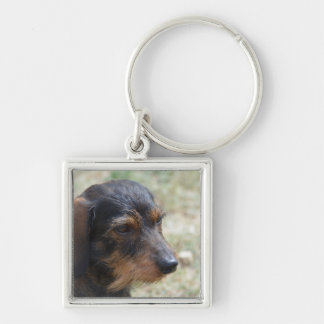 Wire Haired Daschund Dog Silver-Colored Square Key Ring
