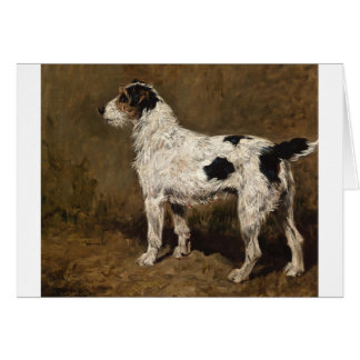 Wire Haired Fox Terrier, Card