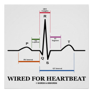Wired For Heartbeat (ECG / EKG) Electrocardiogram Poster