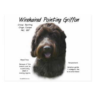 Wirehaired Pointing Griffon History Design Postcard