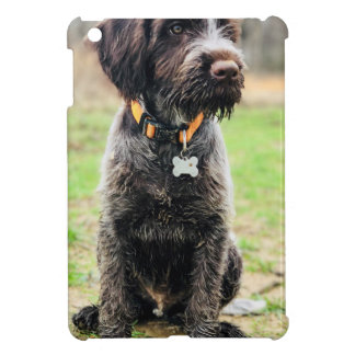 Wirehaired pointing Griffon puppy iPad Mini Cover