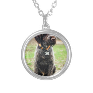 Wirehaired pointing Griffon puppy Silver Plated Necklace