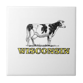 Wisconsin dairy cow tile