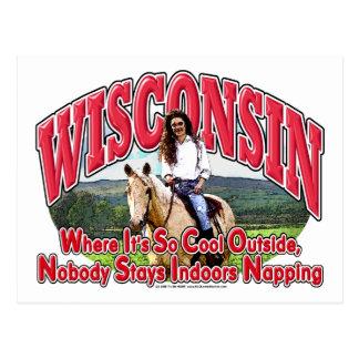 Wisconsin Horse Postcard